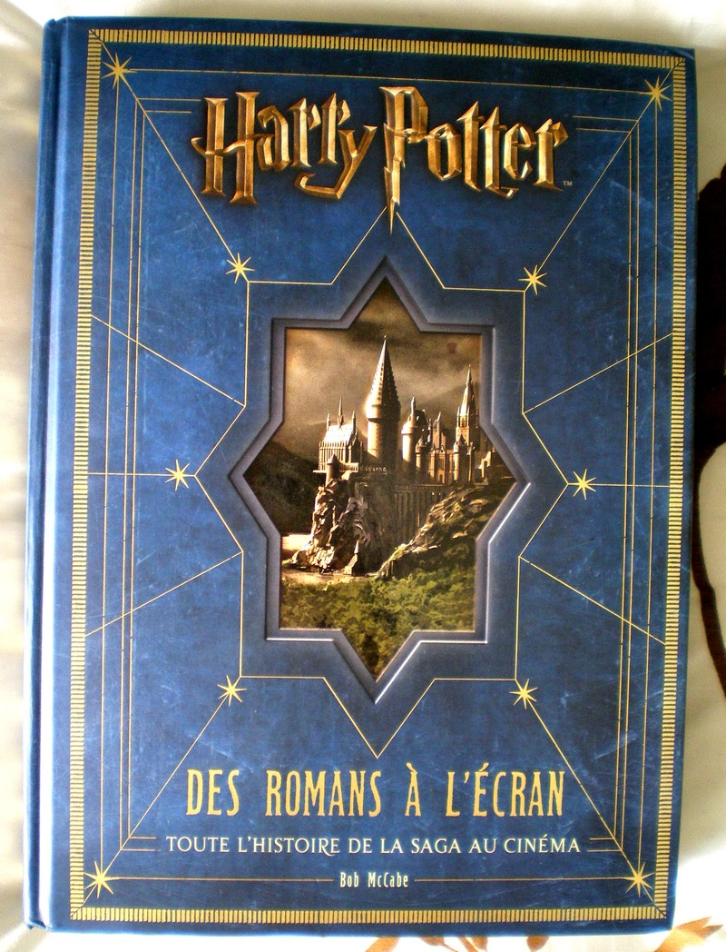 HARRY POTTER DES ROMANS A L'ECRAN 1