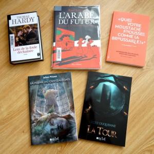 what's up 2016 2 livres emprunts bibliothèque sp achats voyel