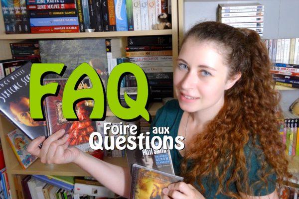 FAQ études irlande projets disney miniature