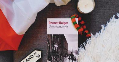 Une seconde vie de Dermot BOLGER
