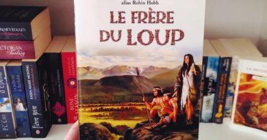 Le Peuple des Rennes, Tome 2 : Le Frère du loup de Megan LINDHOLM